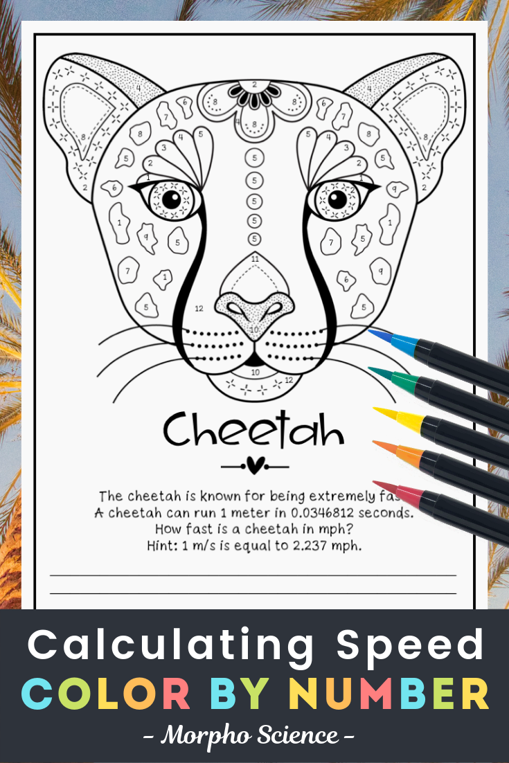 Animal Adaptations Coloring Page Answers - Scenery Mountains