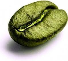 café canephora fogyás)