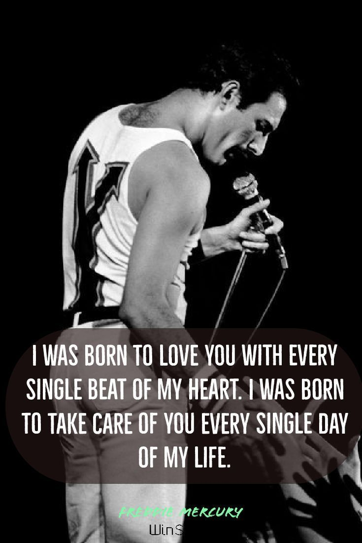 23 best Freddie Mercury Quotes #freddiemercuryquotes 23 best Freddie Mercury Quotes - Winspira #freddiemercuryquotes 23 best Freddie Mercury Quotes #freddiemercuryquotes 23 best Freddie Mercury Quotes - Winspira #freddiemercuryquotes