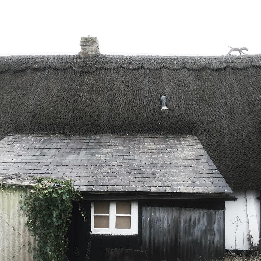 A Little Cottage Update The Thatch Itself Is In Surprisingly Good Condition We Will Probably Just Need The Roof Architecture Fishermans Cottage Thatched Roof