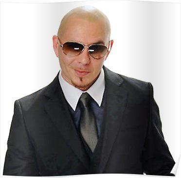Pitbull Poster in 2019 | Products | Pitbulls, Mens sunglasses, Tom meme