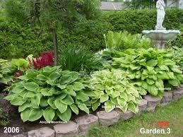 Hosta Garden Front Garden Design Hosta Gardens Small Front Gardens
