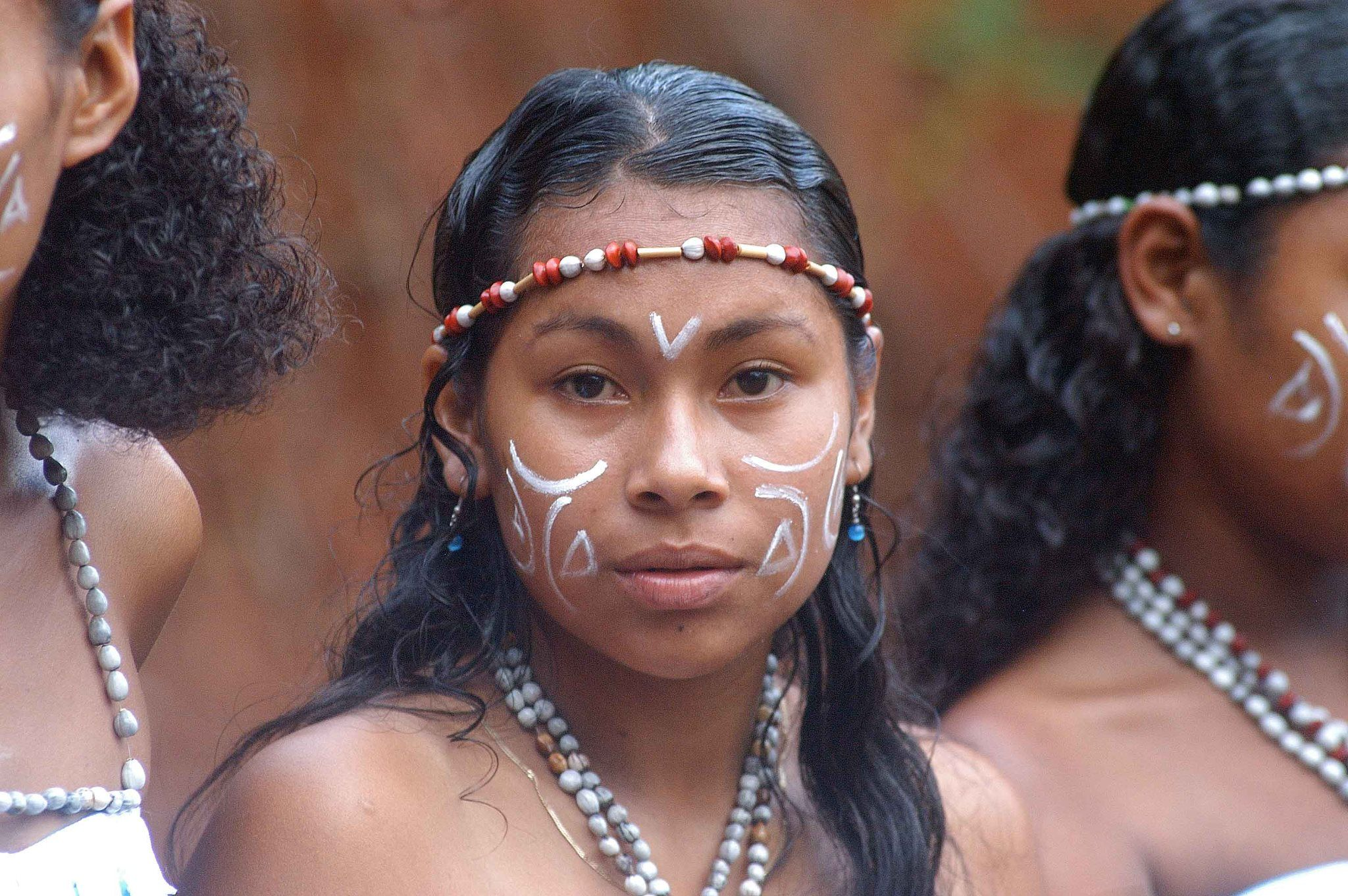 taino and kalinago Kalinago villages were open and unprotected their houses were made of woven thatch which likewise the taino houses withstood hurricanes all about indigenous people.