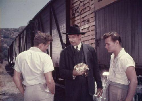 East of Eden, movie scenes in colors. 1954