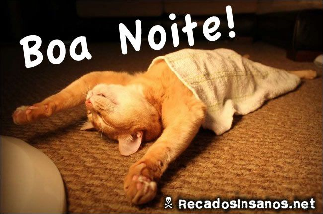 Imagens Engracadas De Boa Noite: IMAGENS PARA FACEBOOK DE BOA NOITE ENGRAÇADO :: Avaré