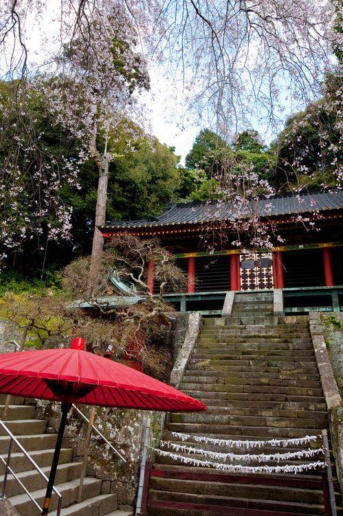 Kunōzan Tōshō-gū is a Shintō shrine in Suruga-ku in the city of Shizuoka in Shizuoka Prefecture, Japan.
