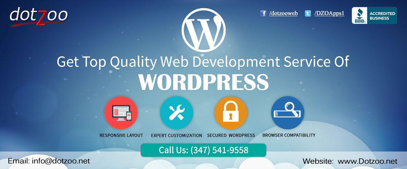 Dotzoo Dzo Banner Wordpress Website Development Web Development Web Development Company
