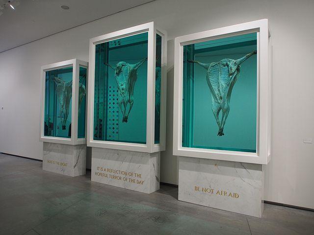 Astrup Fearnley Museum of Modern Art. Damien Hirst