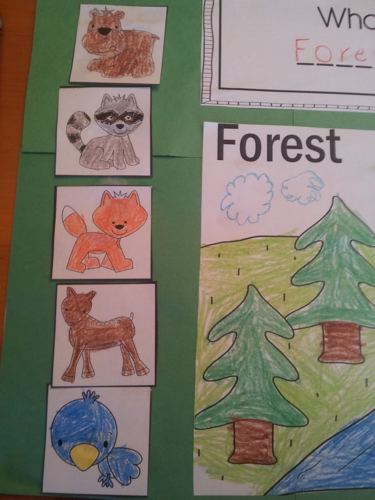 Forest Animal Picture Cards Printables For Kids