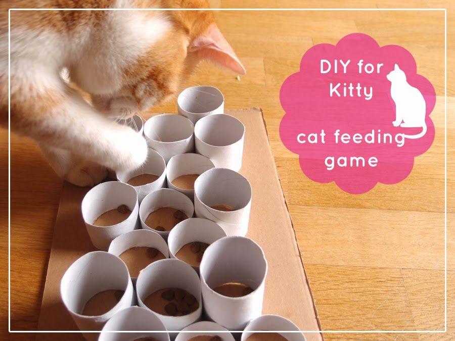 DIY for Cat - cat feeding game