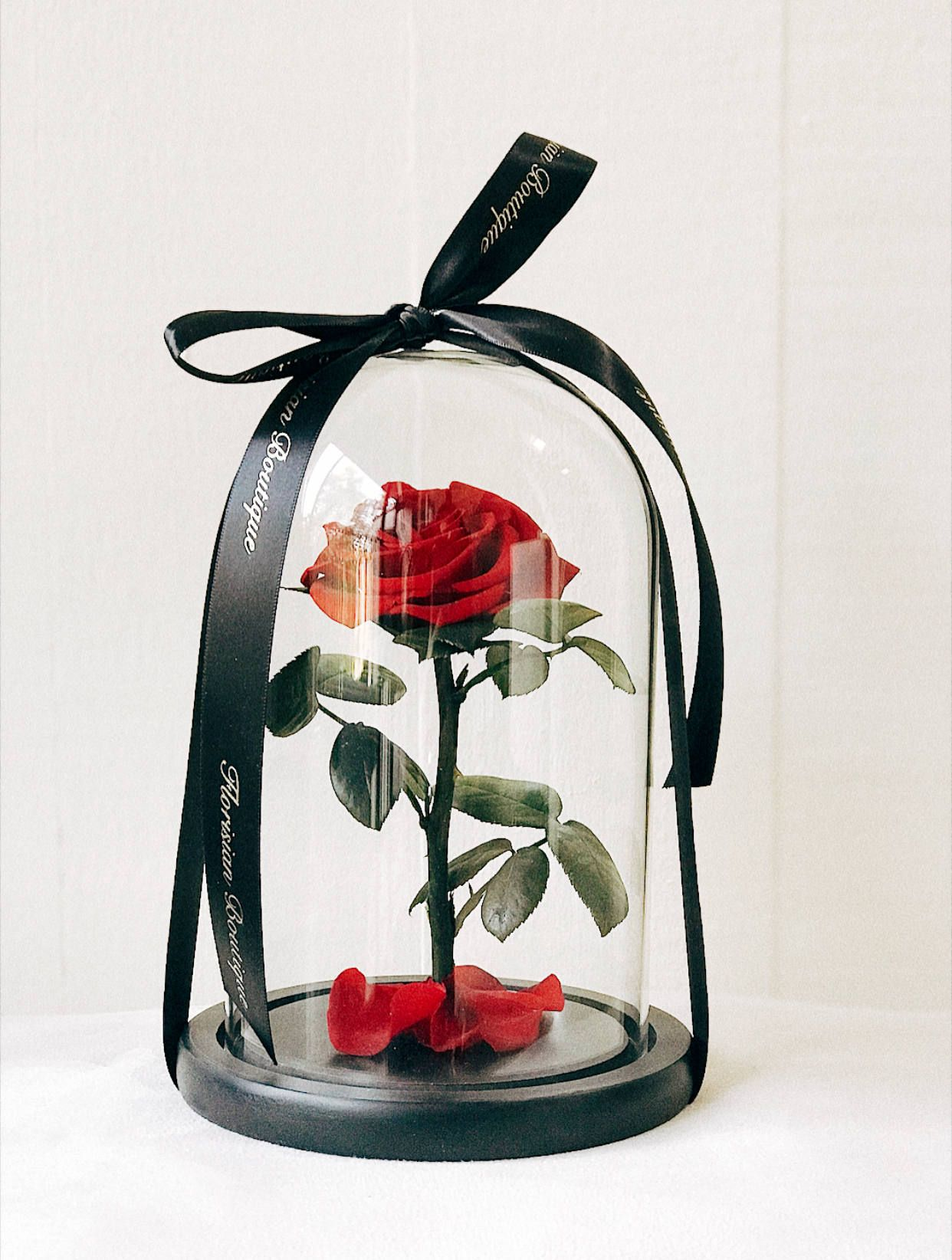 Beauty And The Beast Rose Rose In Glass Dome 100 Real Rose That