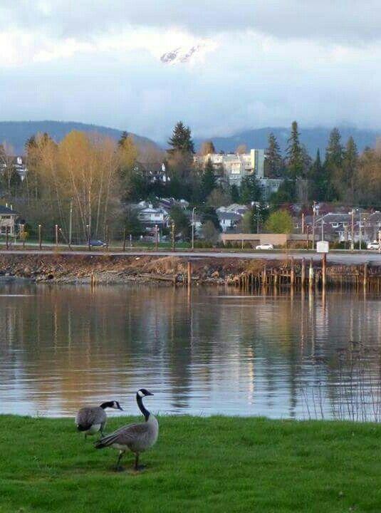 Fort Langley on River