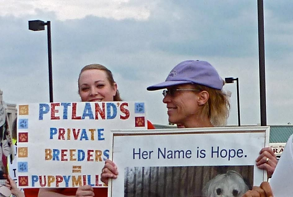 Peaceful Rally Against Bethel Road Columbus Petland Thanks