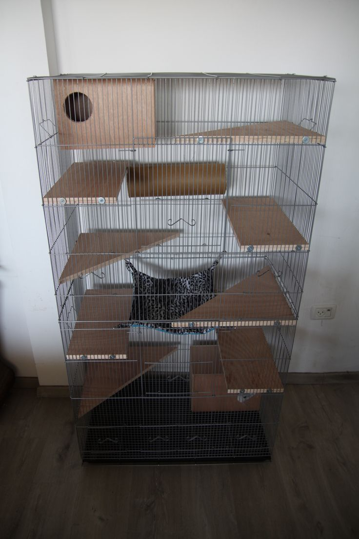 Tall wire chinchilla cage with lots of wooden ledges and hideouts ...