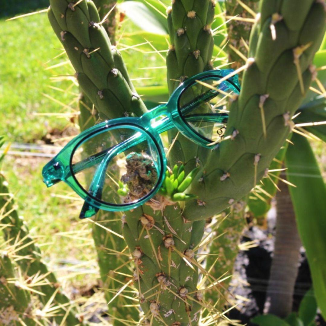 Green round glasses / Gx by Gwen Stefani eyewear! Colorful