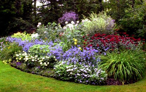 If I Hired Someone I Could Have A Flower Garden Like This 640 x 480