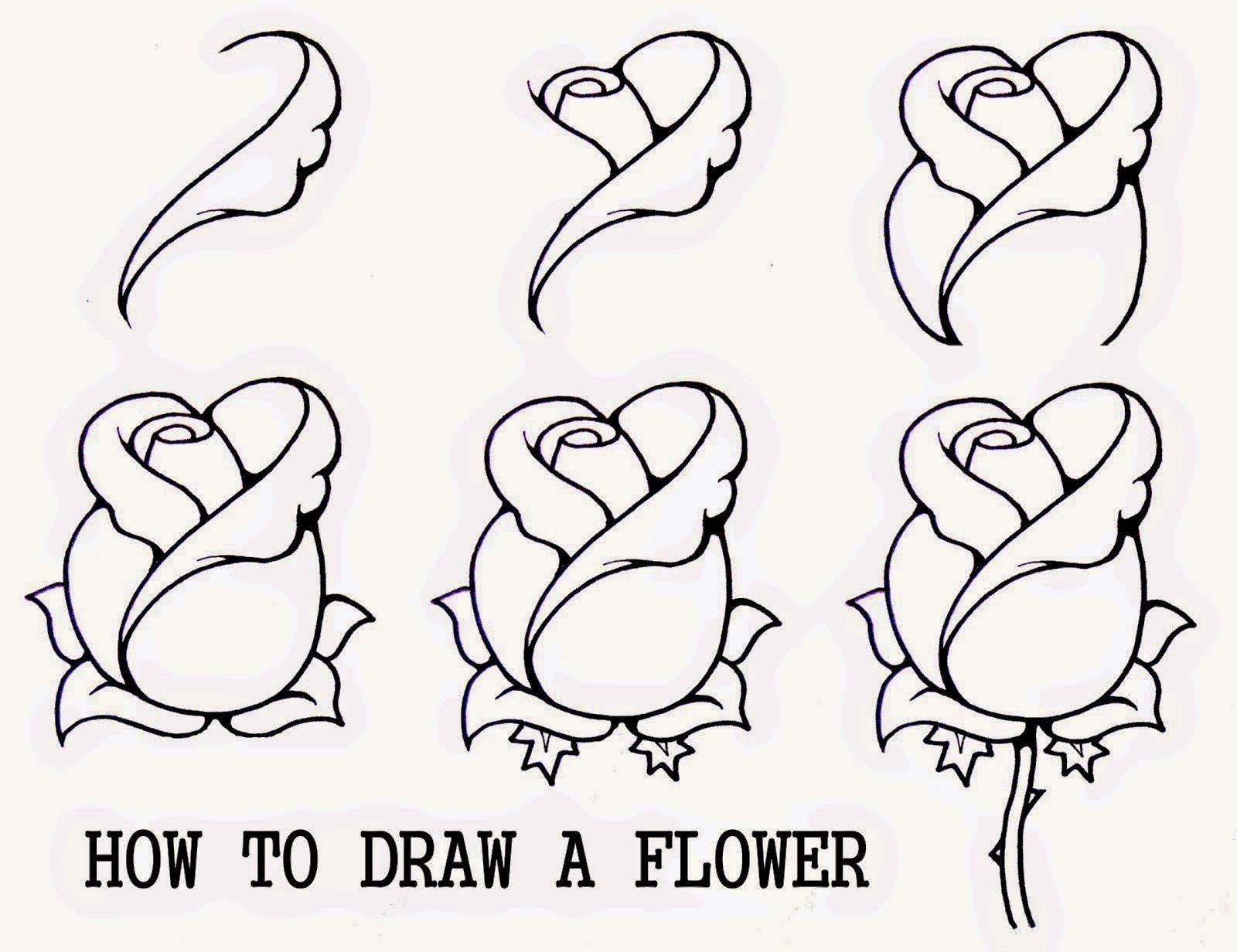 Easy Art Drawings Step By Step Best Wallpaper Flower Drawing Beautiful Flower Drawings Drawings