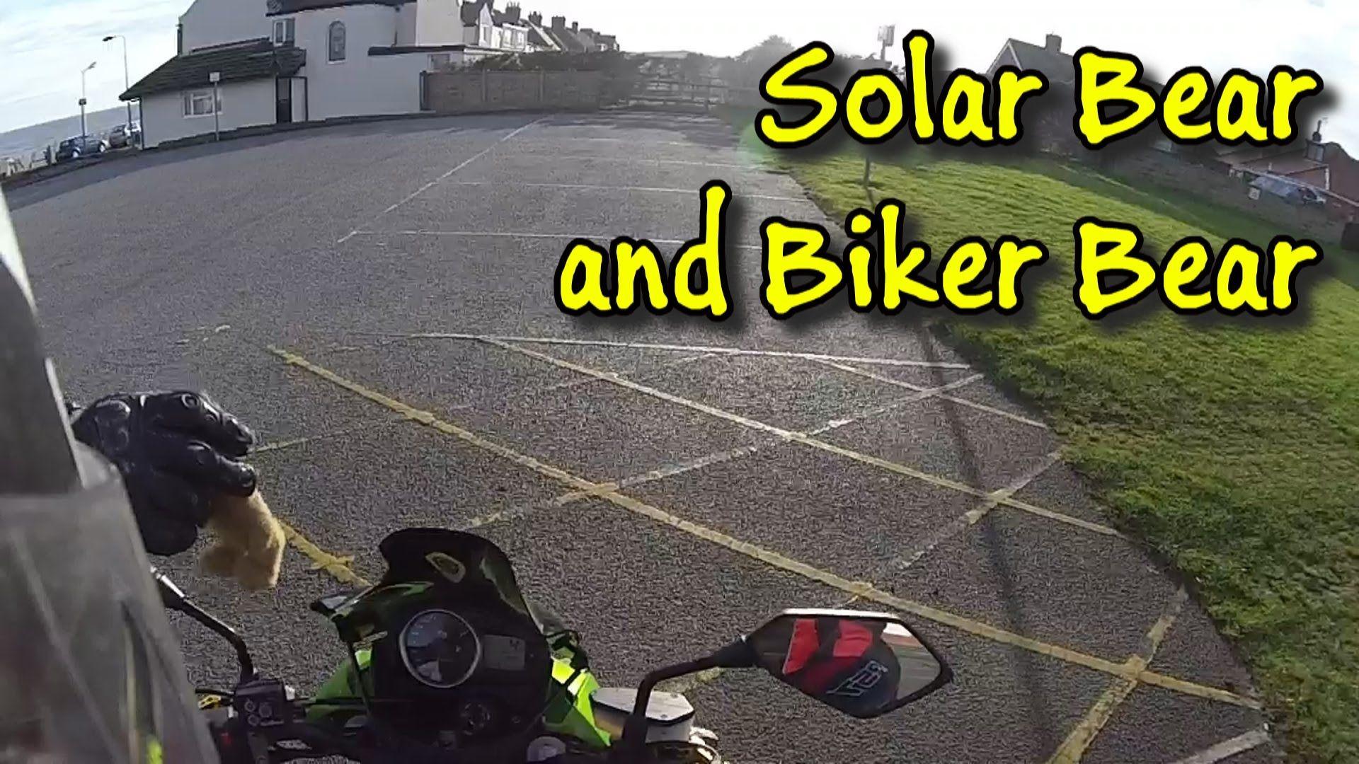 Solar Bear and Biker Bear