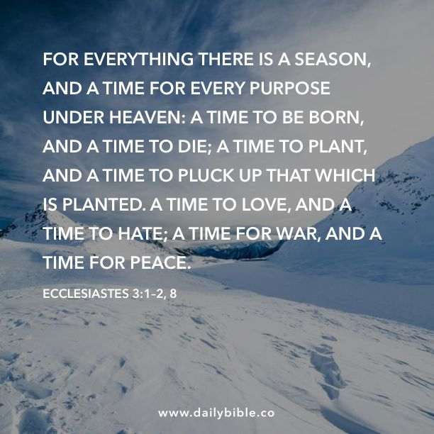 Image result for To everythin there is a seaon, a time for war, and a time for peace