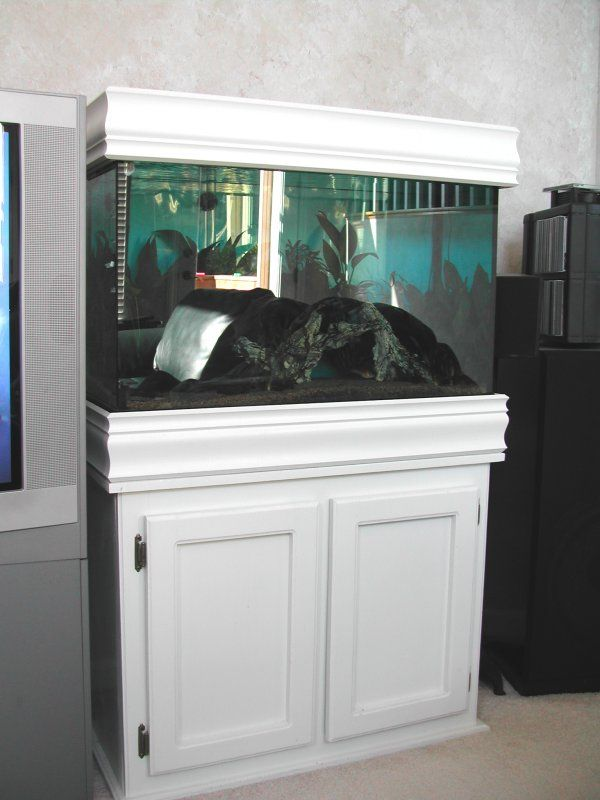 Delicieux Fish Tank With Crown Molding | Finished The Canopy For My 29 Gallon Tank.  Here Are Some Pics: