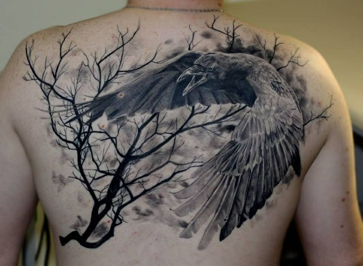 Raven In Flight Tattoo Tattoo Ideas Pinterest Raven Back