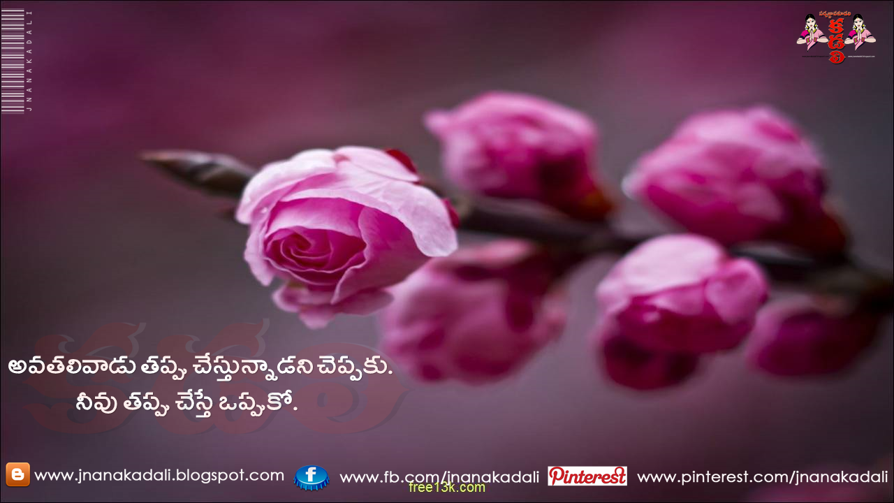 Telugu Manchi Matalu Imagesand Nice Telugu Inspiring Life Quotations With Nice Images Awesome Telug Spring Flowers Wallpaper Beautiful Pink Roses Pink Flowers