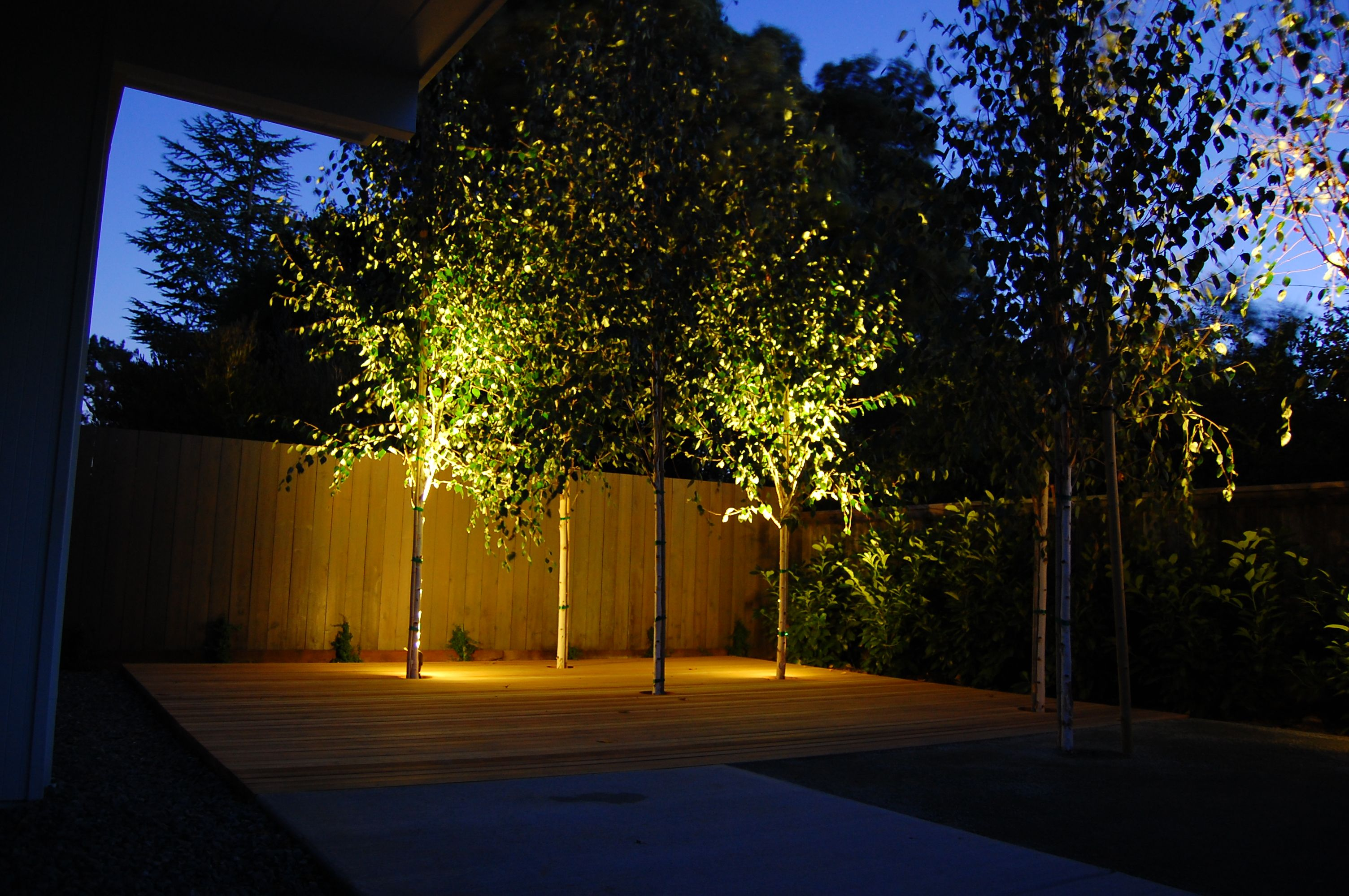 Outdoor Landscape Lighting Examples : Striking low voltage outdoor lighting examples and ge