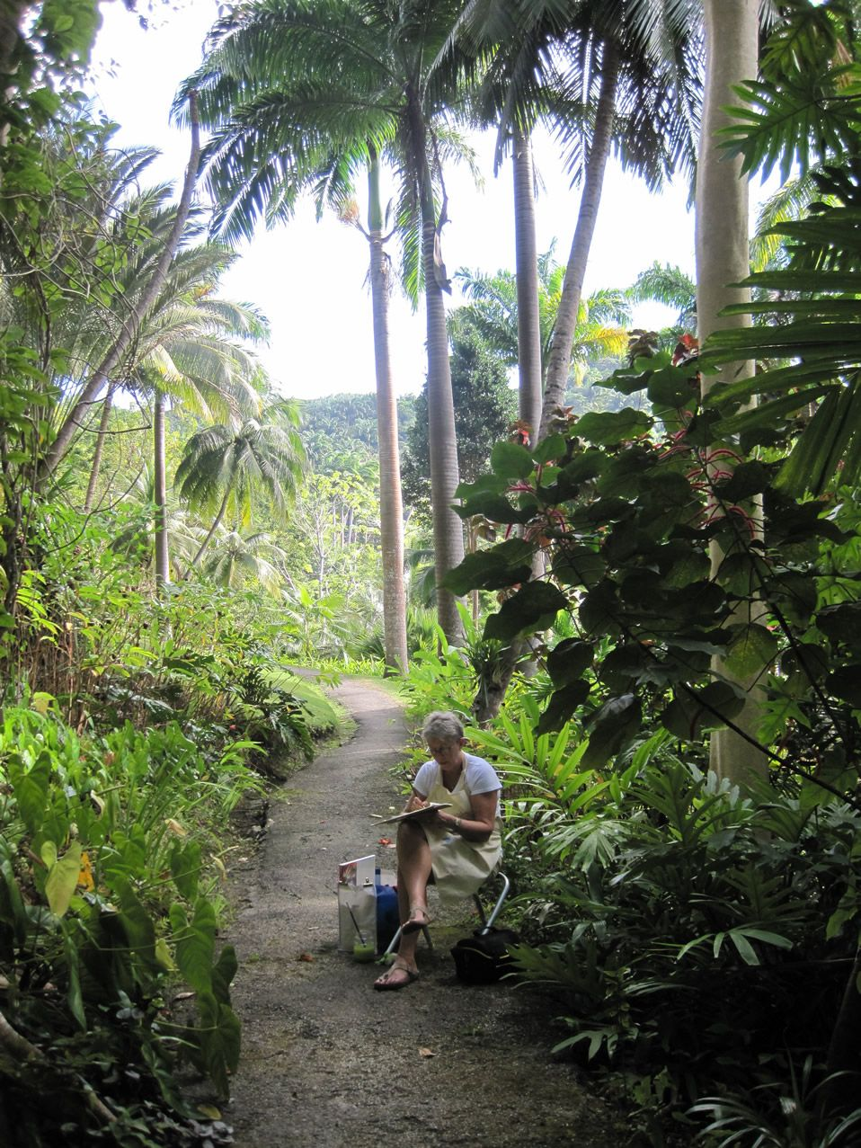 Flower Forest, Barbados; been there, loved the vegetation... soooooo green!