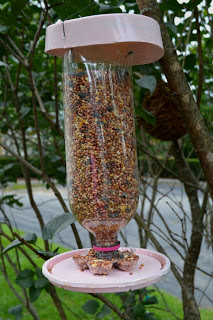 Homemade Bird Feeder From A 2 Liter Soda Bottle Outdoor