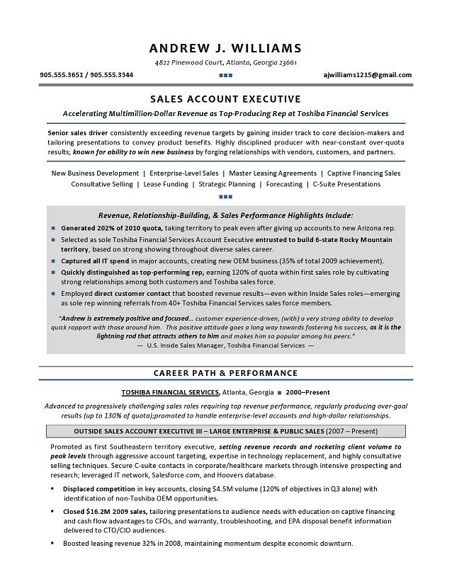 Technical Sales Resume Executive Resume Writer For It Leaders Sales Resume Executive Resume Technical Sales