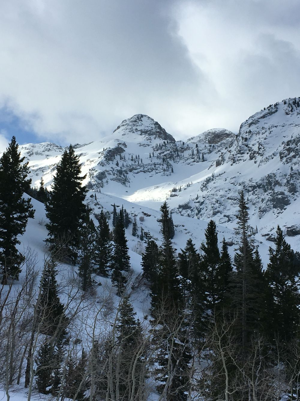 Dromedary Peak Wasatch Mountains Utah Mountains Hiking Trails Natural Landmarks