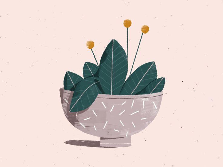 a plant... again.