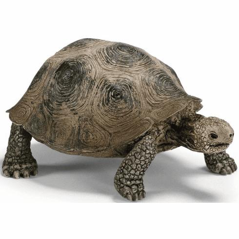 SCHLEICH Wild Life-testuggine gigante 14601