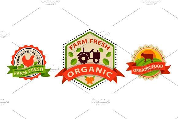 flat style of bio organic eco healthy food label logo template and