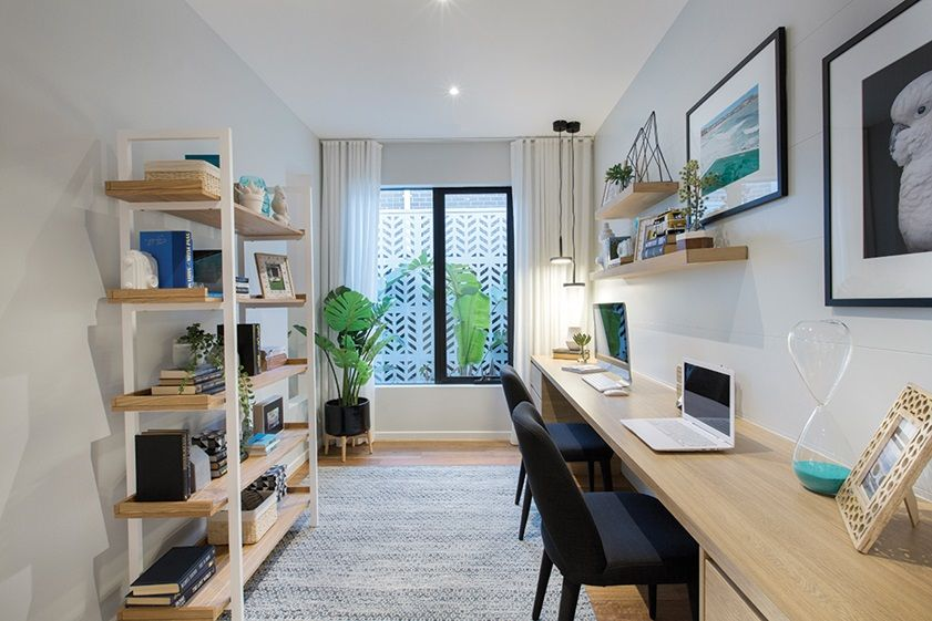 Dunedin 48 Study Contemporary Design Home Office Space Amazing Living Room Dunedin Style