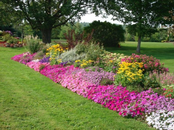 Rock borders appeal of your house rock flower bed for Flowers for flower bed ideas