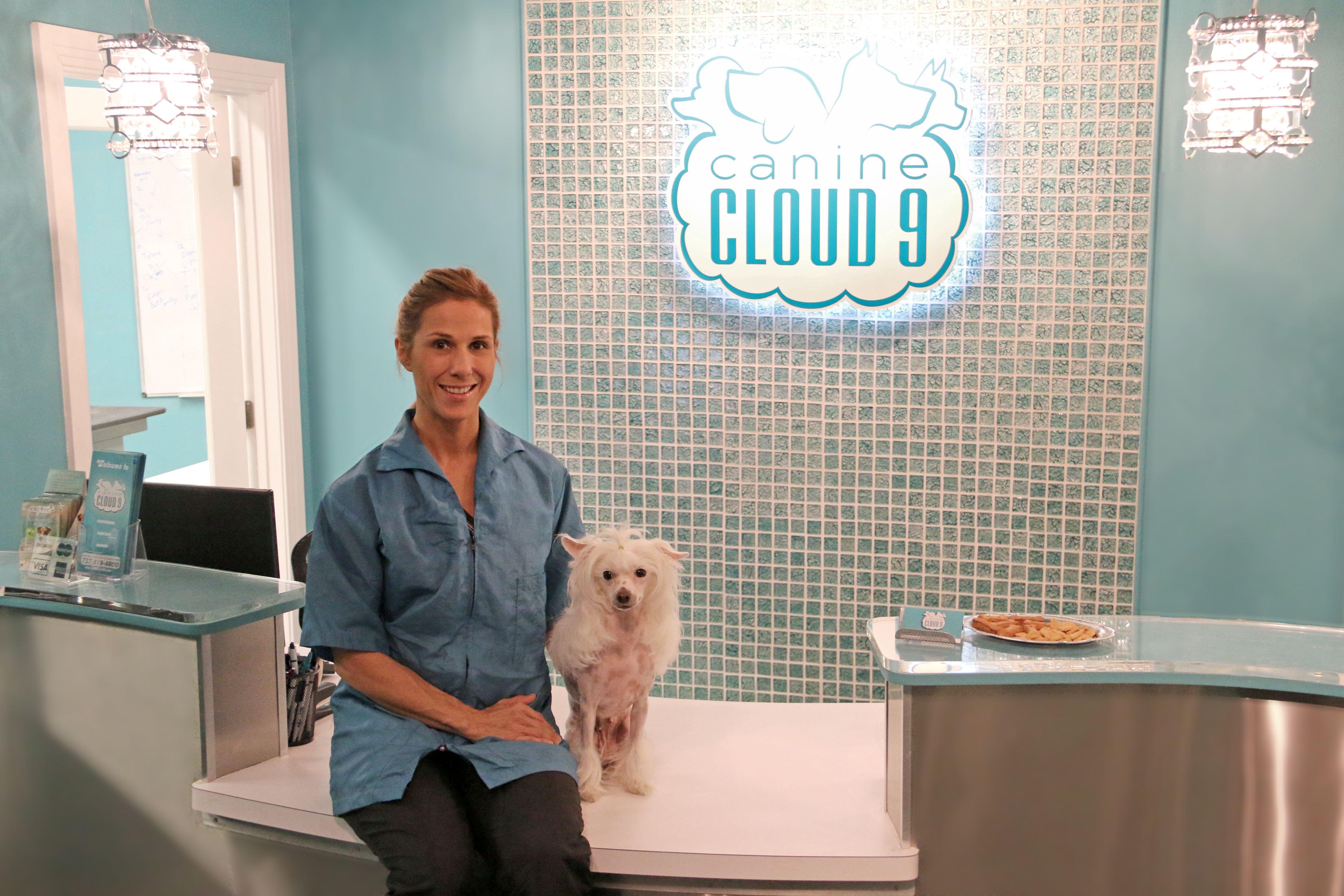 Canine Cloud 9 My Grooming Salon In Virginia Beach Va Dog