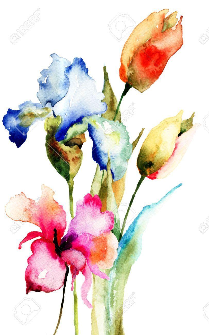 Original Spring Flowers Watercolor Illustration Flowers Illustration Original Spring In 2020 Floral Watercolor Watercolor Illustration Watercolor Flowers Paintings