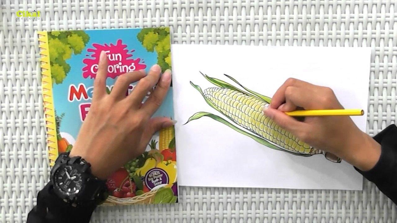 Cara Mewarnai Buah Dan Sayur Dengan Pensil Warna Bonus Buku Fun