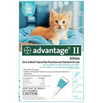 Advantage Ii 4pk Kitten Under 5lbs Read More Reviews Of The Product By Visiting The Link On The Image This Is Flea Treatment For Kittens Cat Fleas Fleas