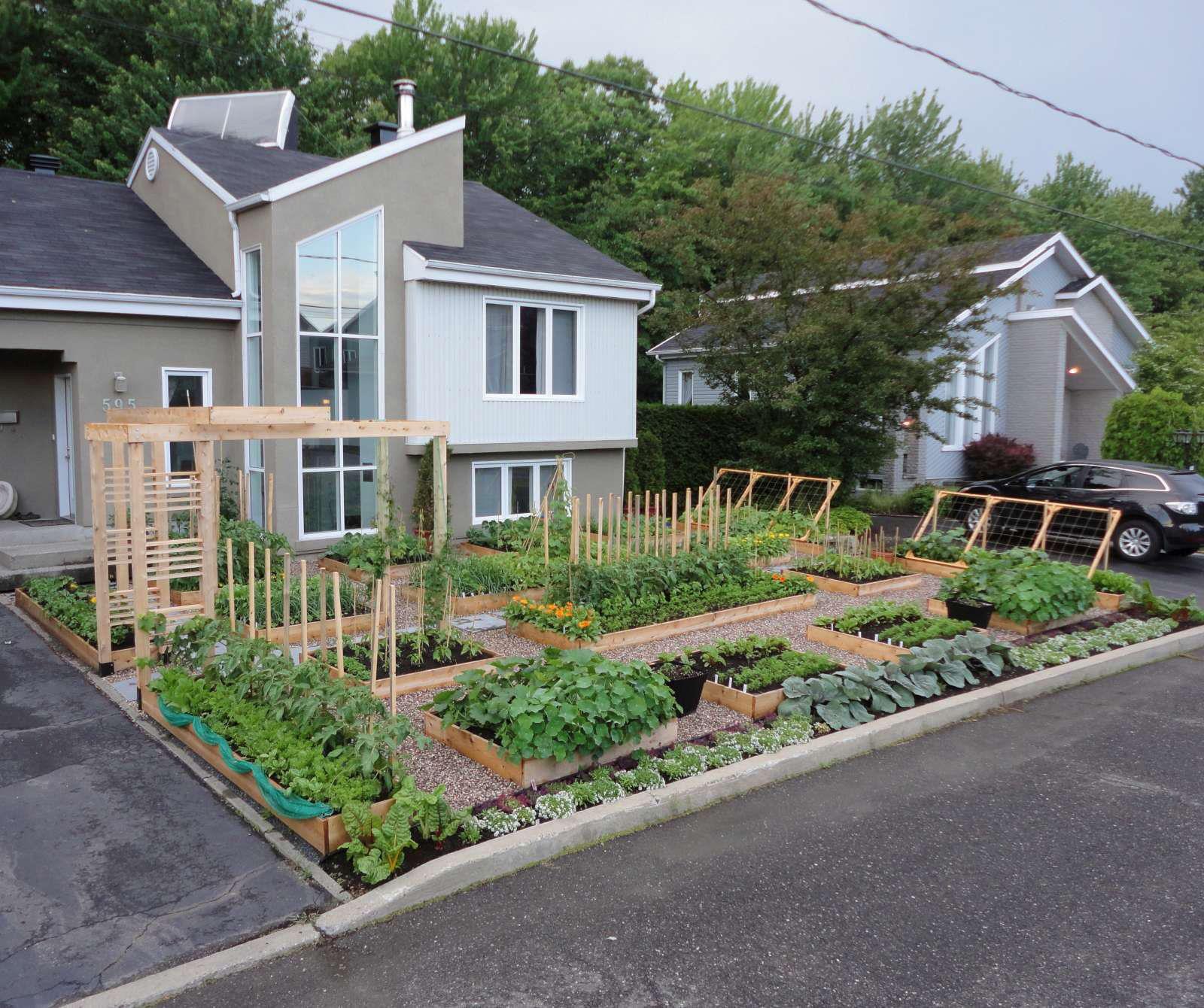 great looking front yard veggie garden