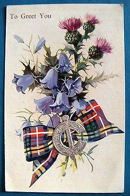 Scottish Fitment Cinquefoil, Thistle & Tartan Greeting Valentine & Sons PC