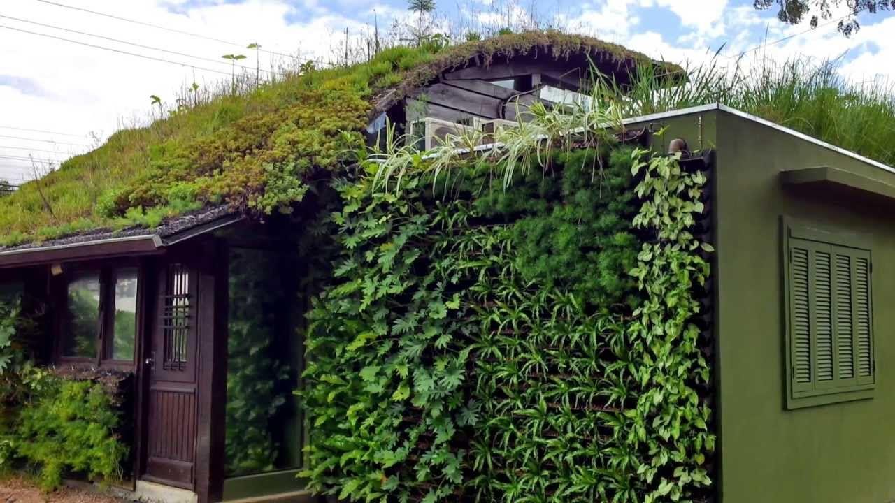 Saiba como instalar um Jardim Vertical Canguru | Vídeos | Pinterest ...