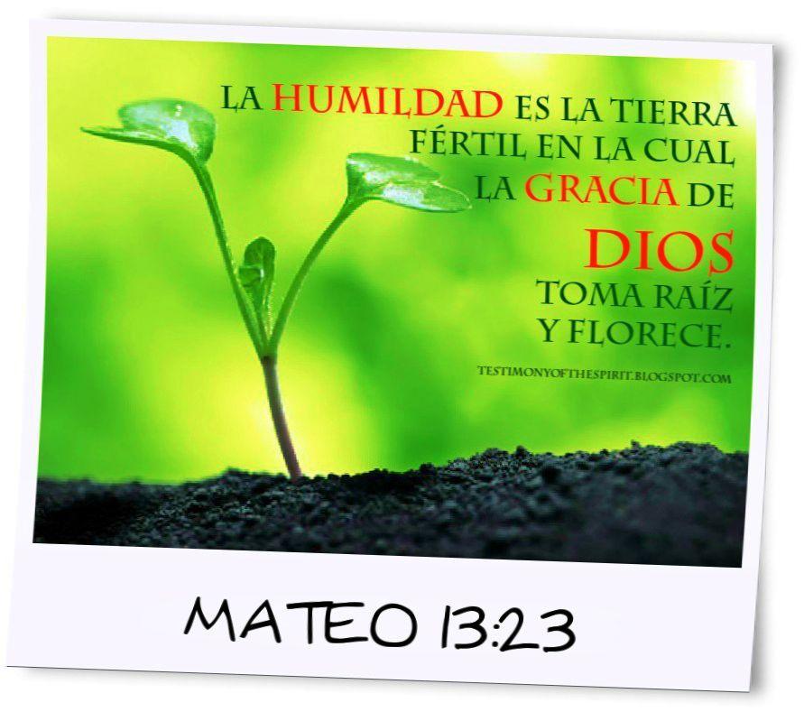 La humildad es la tierra fértil en la cual la gracia de Dios toma raíz y florece. Mateo 13:23