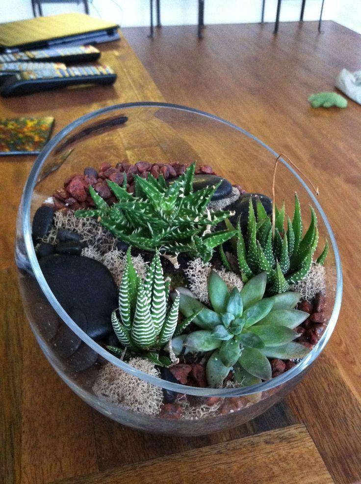 Terrarium Design Cactus Terrarium Succulent Terrarium Layers