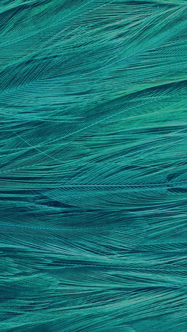 Feather Blue Bird Pattern Iphone 5s Wallpaper Abstract Iphone