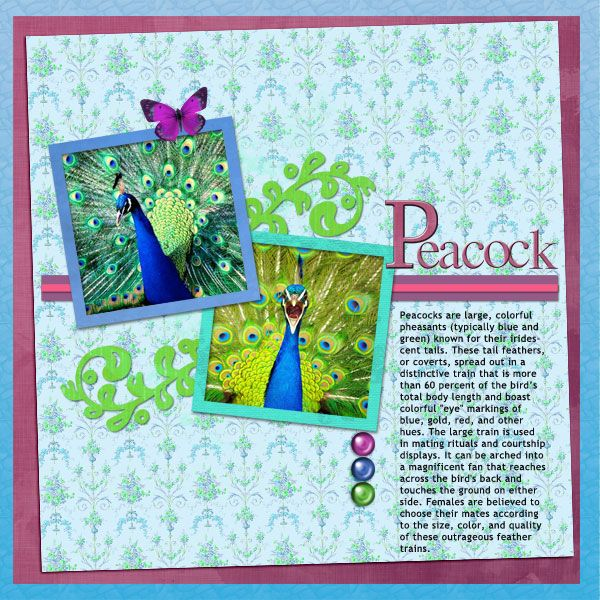Scrapbooking to learn. Could be used to document unit studies or even as a yearbook/portfolio to show your facilitator what your kids have been up to.  Will be a fabulous too when the kids are old enough to do the journalling themselves too!