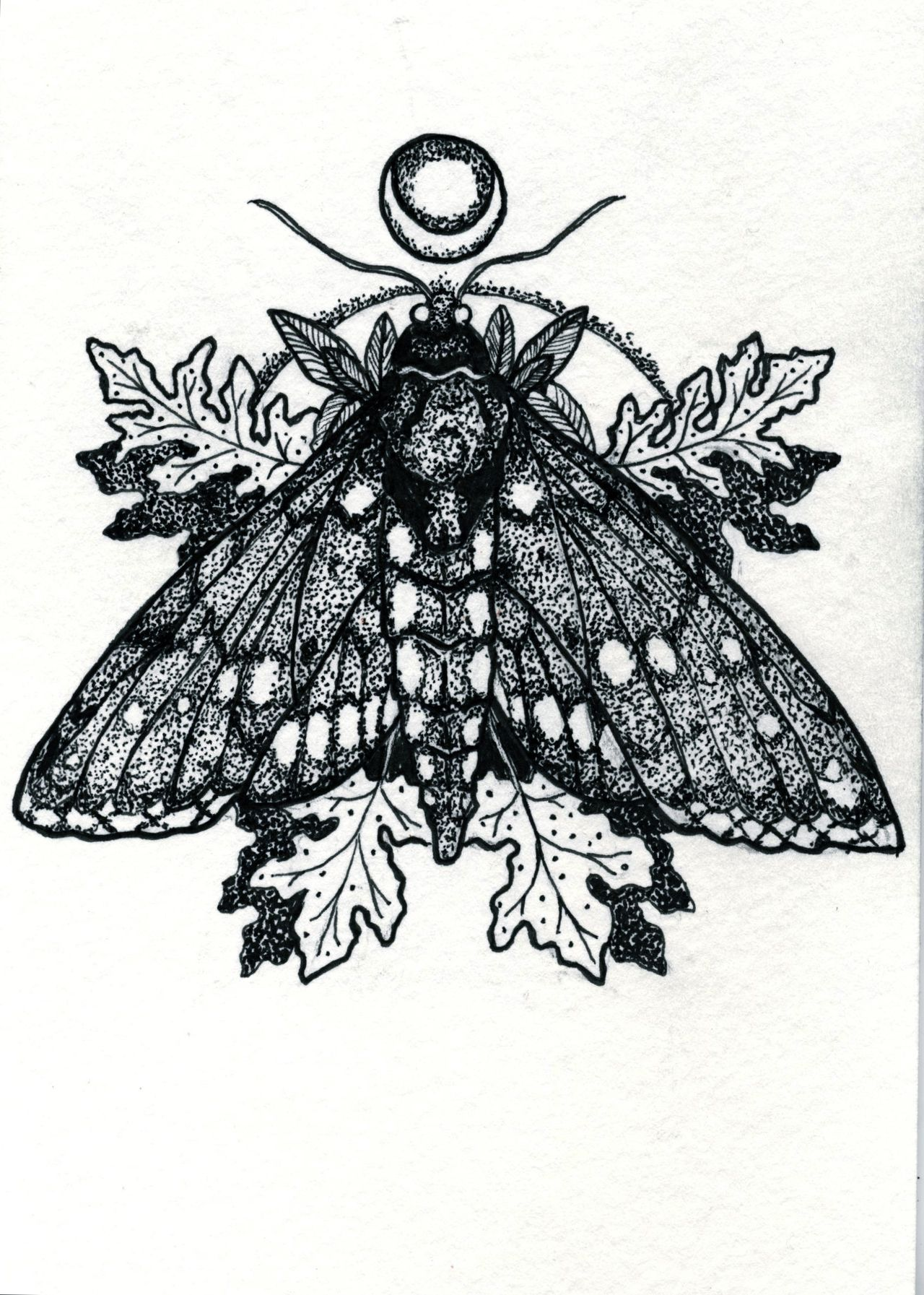 The o jays butterfly tattoos and clothes on pinterest - The Hangman S Beautiful Daughter