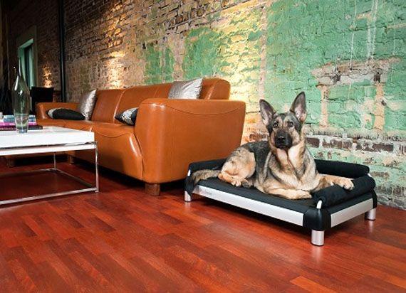 Pet Beds by Dutch Dog Design