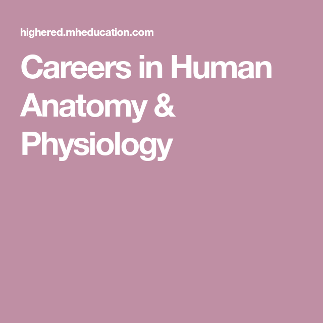 Careers In Human Anatomy Physiology Bridge Physiology Human